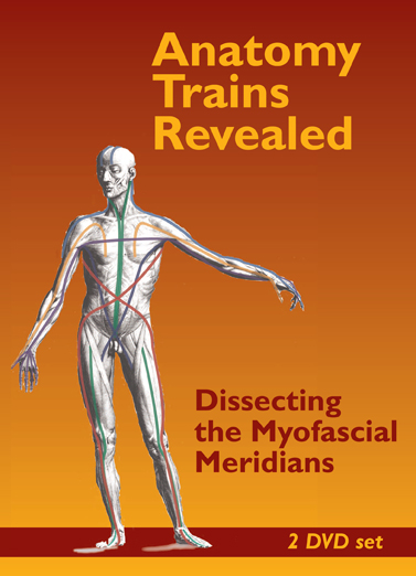 Anatomy Trains Revealed Dissecting The Myofascial Meridians