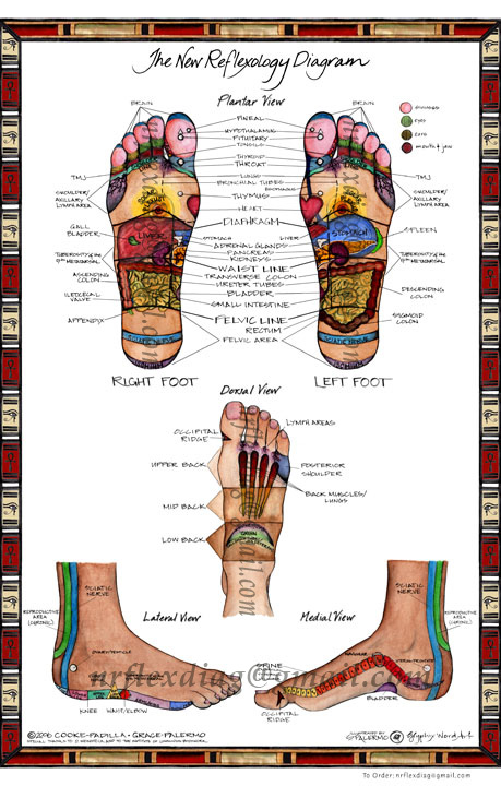 The New Reflexology Diagram Products Directory Massage Magazine