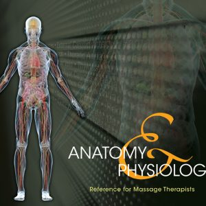 Anatomy and Physiology Reference for Massage Therapists
