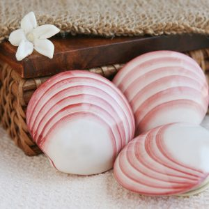 Porcelain Lava Shells
