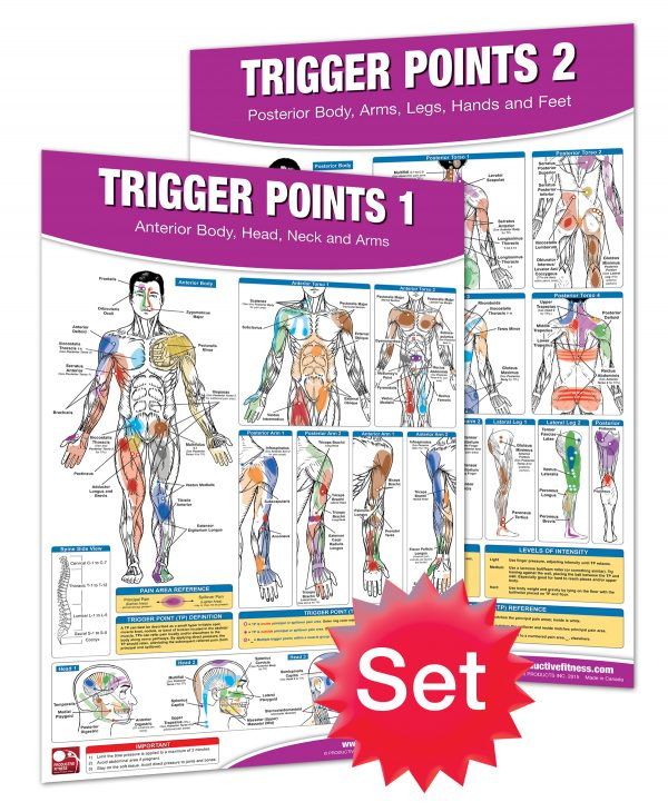 Trigger Point Posters