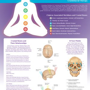 Meridians and Chakras wall chart