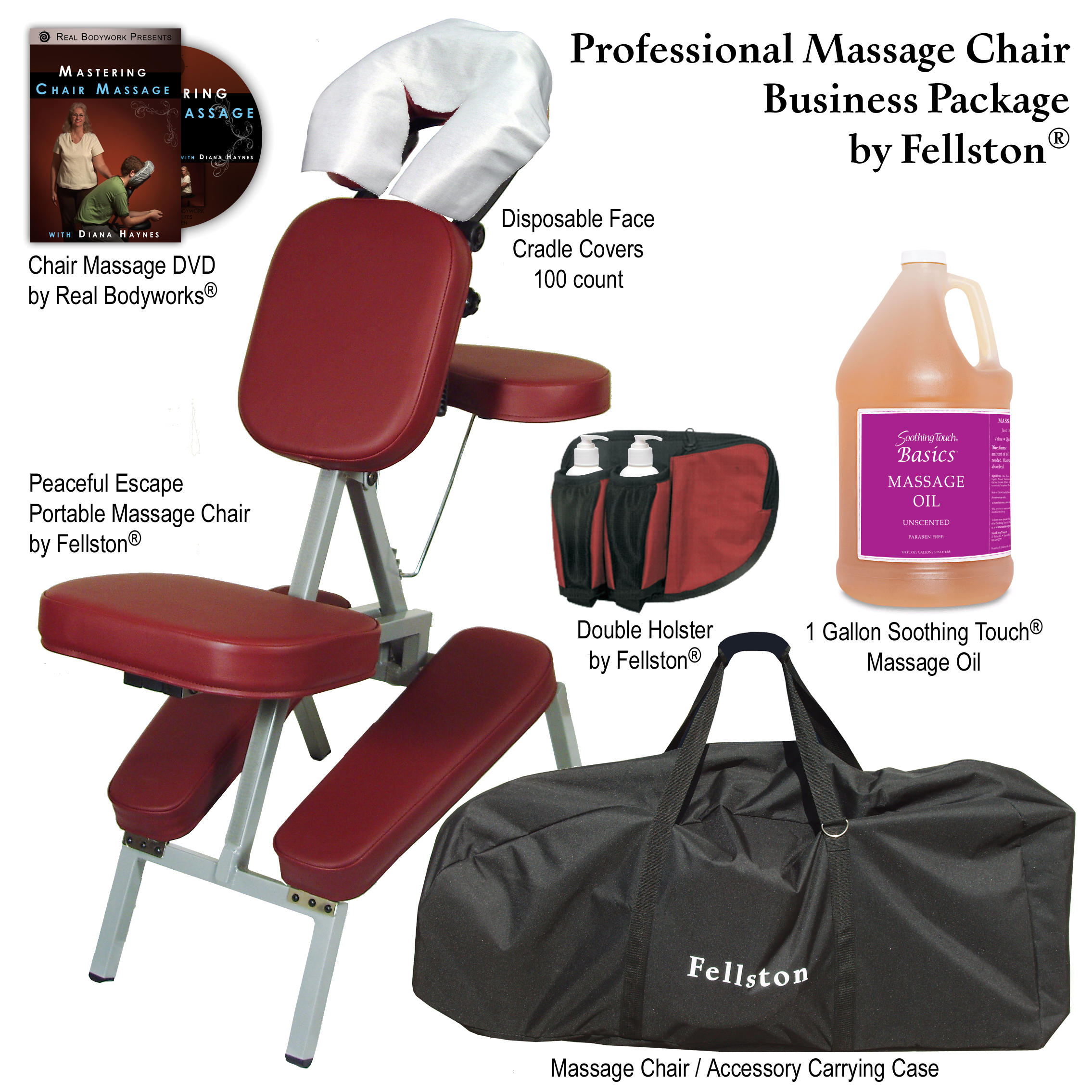 Professional Massage Chair Business Package – Products Directory