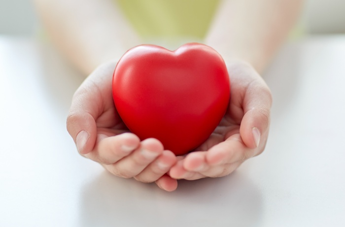 Hands holding plastic red heart
